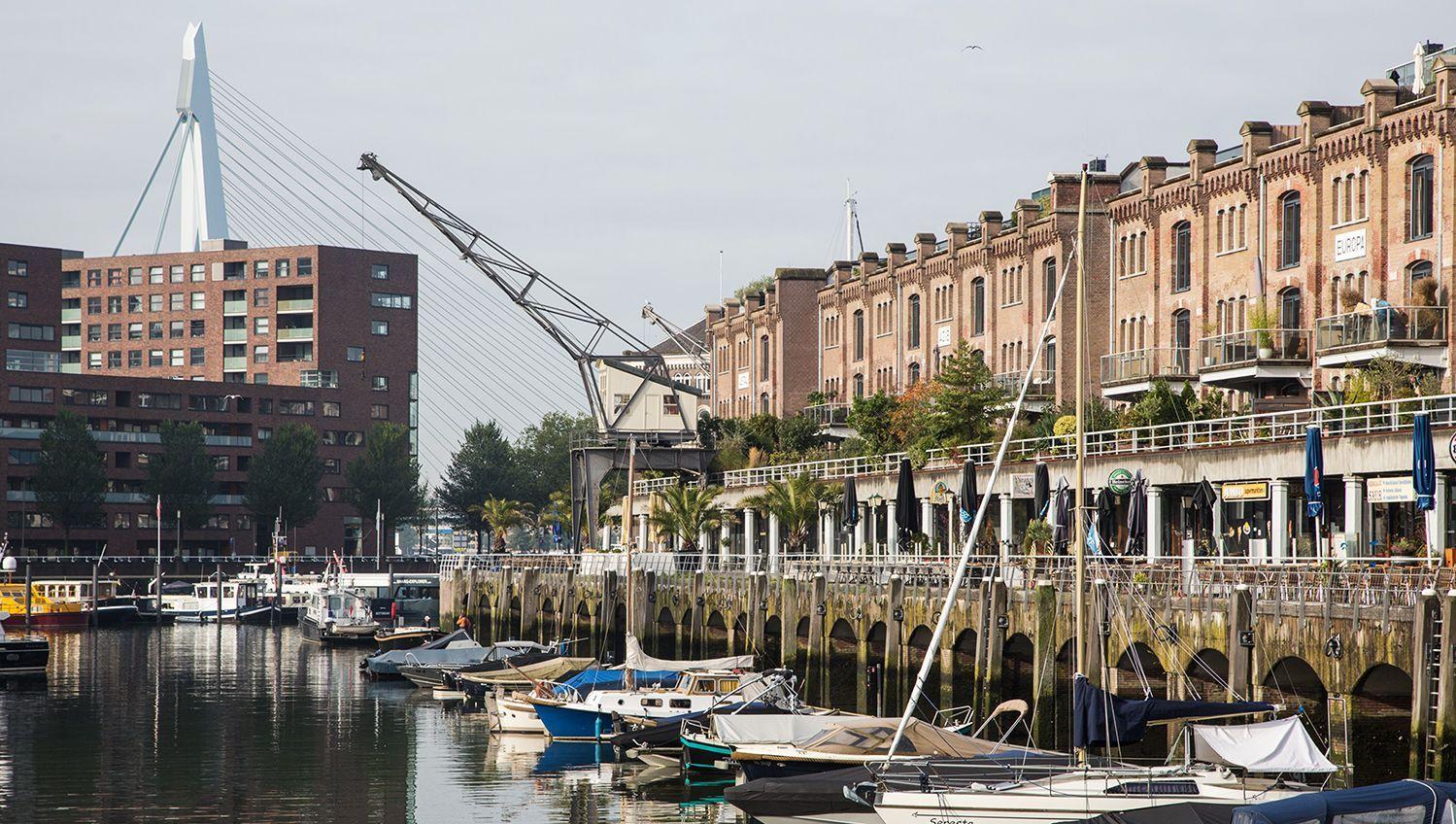 Pincoffs Best Boutique Hotel In Rotterdam Near Erasmus